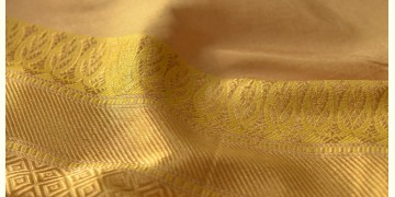 Madhubala ✽ Banarasi Silk Saree ✽ 14
