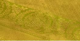 Madhubala ✽ Banarasi Silk Saree ✽ 21
