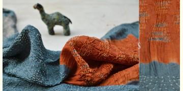 Roha ★ Bandhani & Ajrakh ★ Tussar silk saree { N }